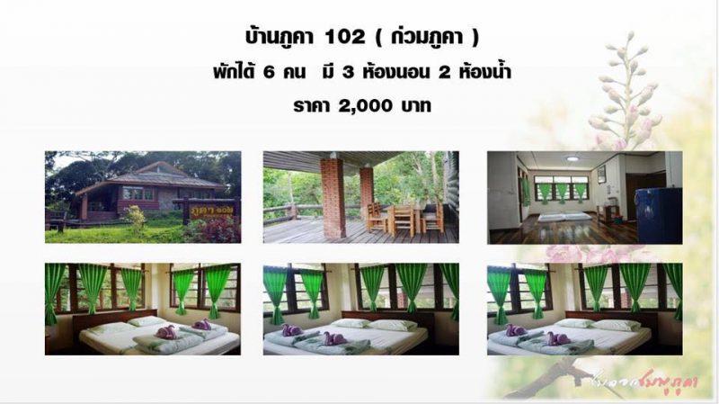 บ้านพักอุทยานดอยภุคา บ้านก่วมภูคา ที่พักบ่อเกลือ